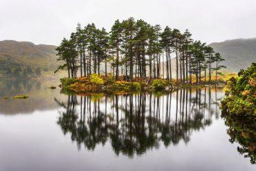 PrimaLoft unterstützt Banff Tour mit Waldprojekt